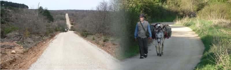 Caminho Francês - de Belorado a Atapuerca