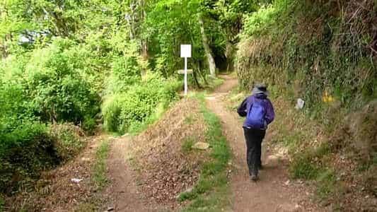 Vídeo - Otavia no Caminho de Santiago de Compostela - 2014, indo para o Cebreiro, entre Herrerias e La Faba